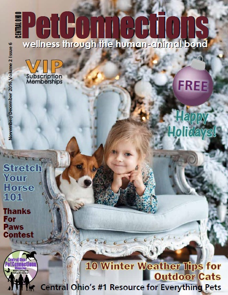 Central Ohio Holiday Issue 2016