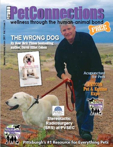 Cover_Jan Pgh 17