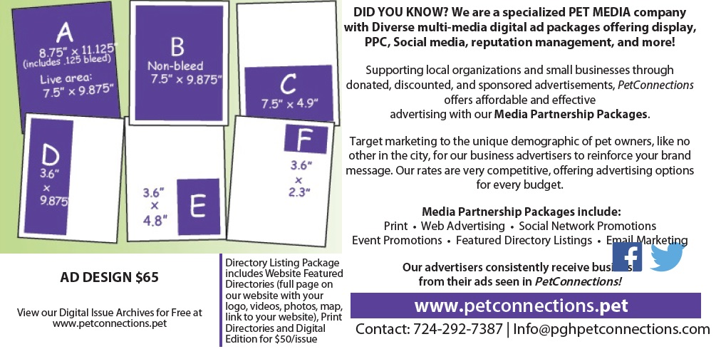 Media Kit web ad page 2
