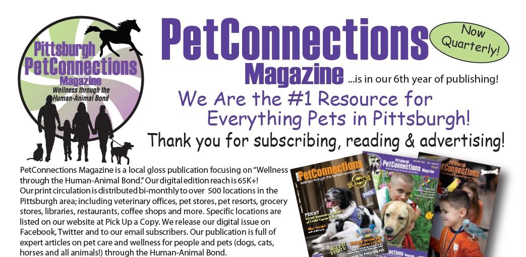 Media Kit web ad page